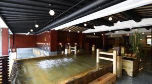 大江戸温泉物語ホテル木曽路温泉