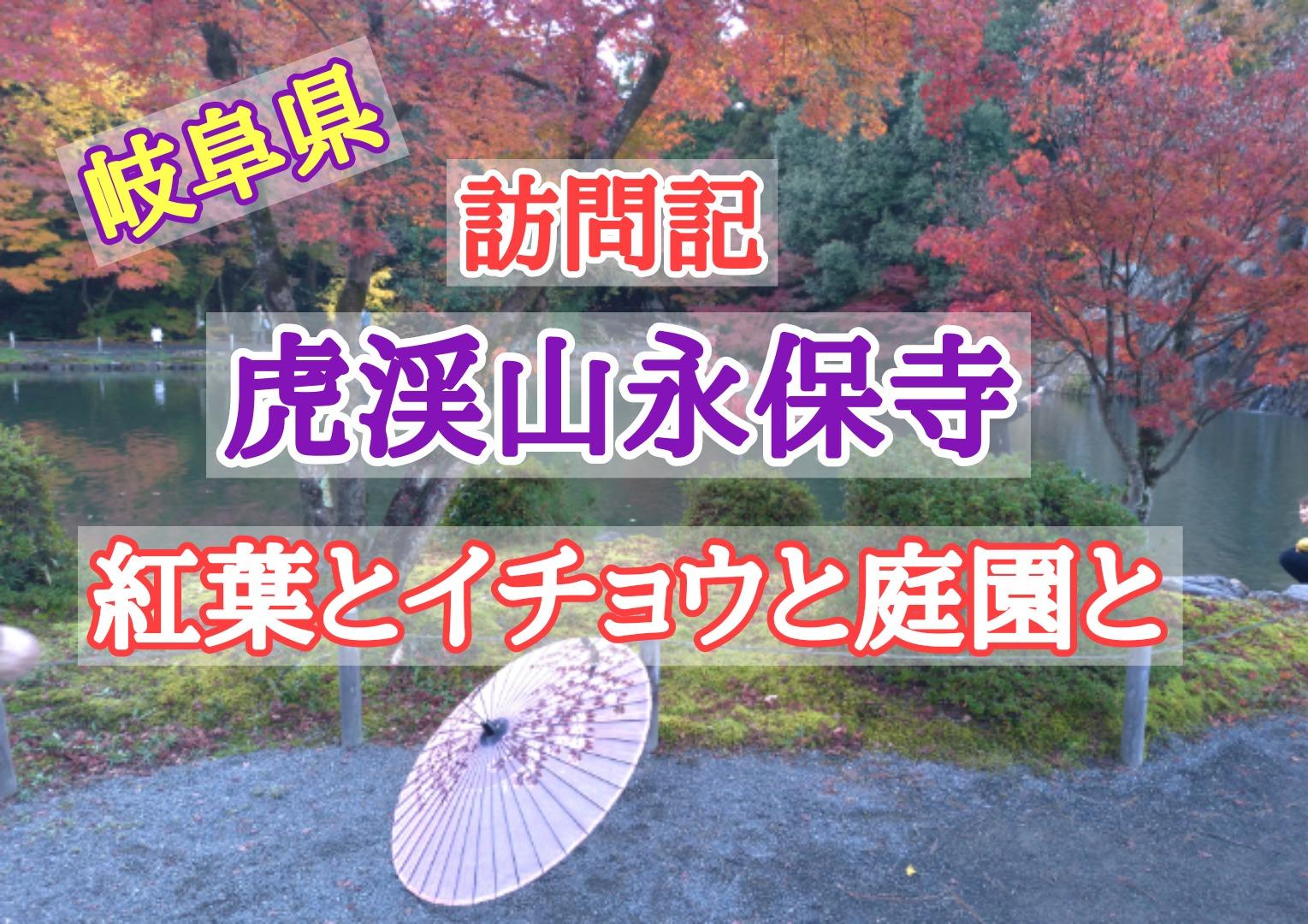 虎渓山永保寺訪問レビュー 紅葉とイチョウと庭園と